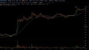 cena bitcoin bitfinex short