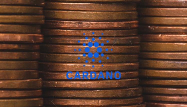 Cardano Stake Pools staking udziały blockchain ADA