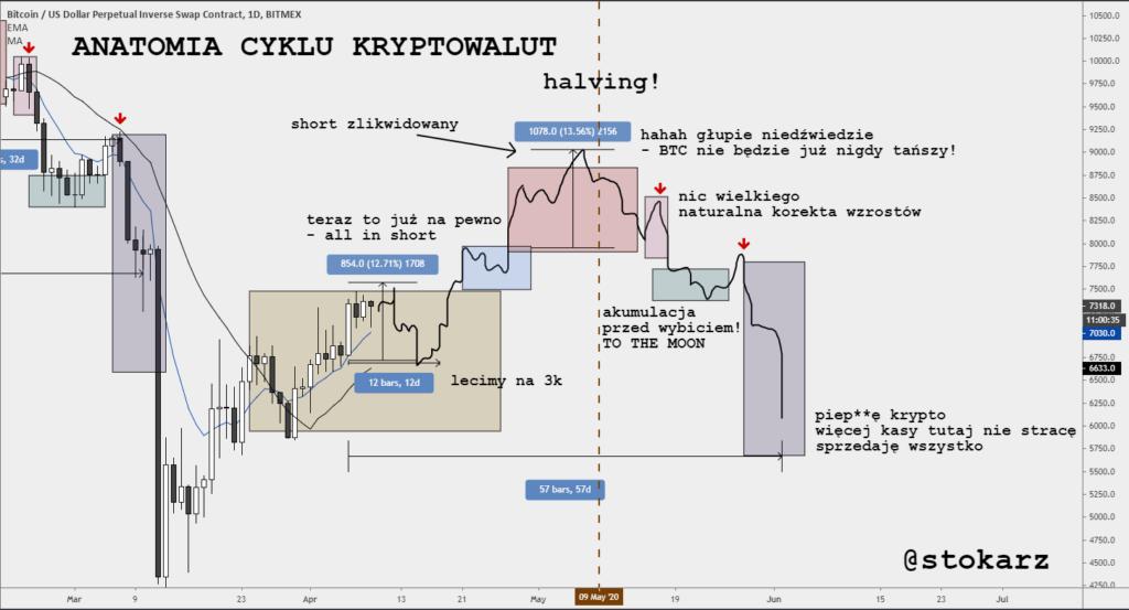 Anatomia cyklu rynkowego - hazard