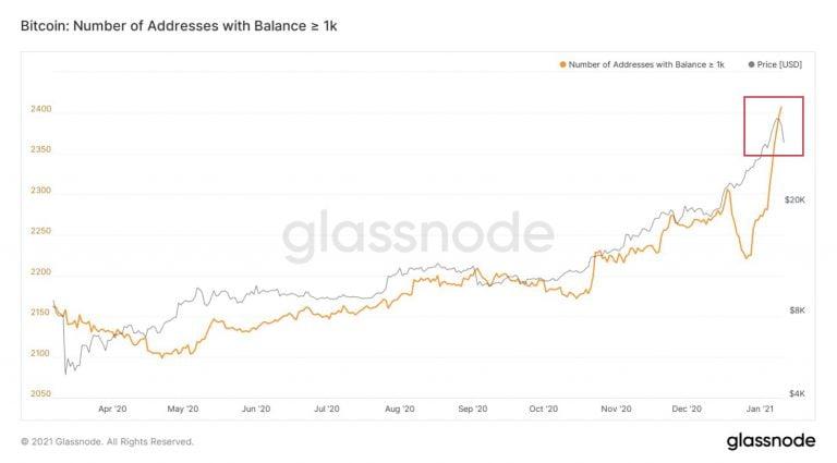 adresy bitcoin z więcej niż 1000 BTC