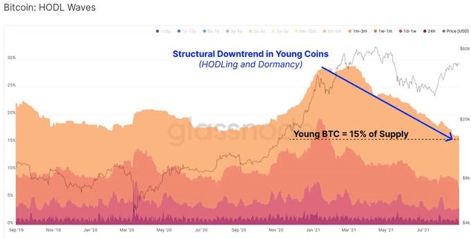 bitcoin hodl waves
