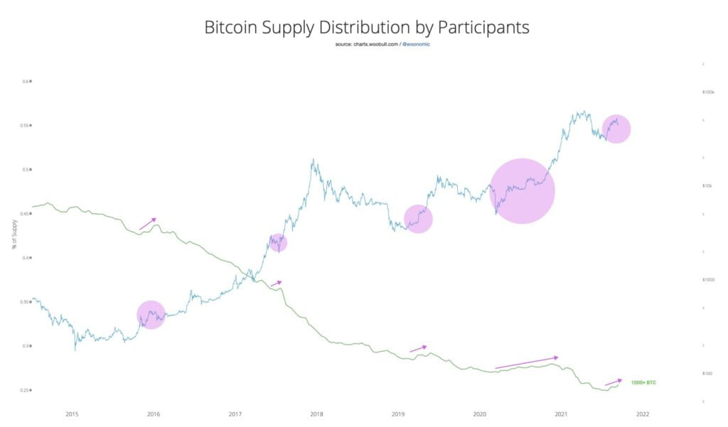 dystrybucja bitcoin 2